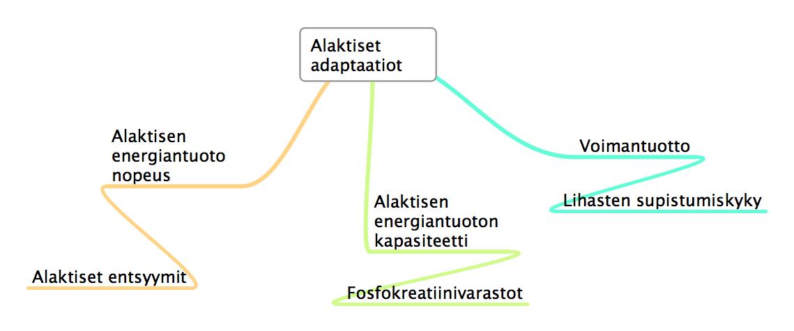 Alaktiset adaptaatiot